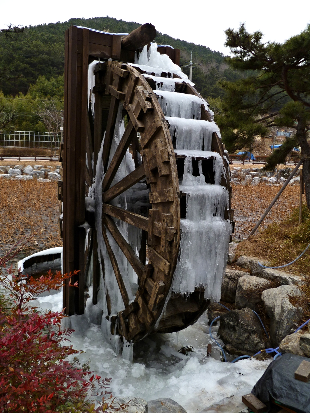 Frozen_Water_Wheel_Close-up_at_Seonam_Lake_Park,_Ulsan
